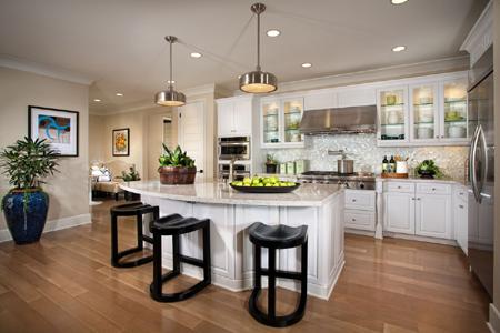 portola springs garden hill residence1 kitchen