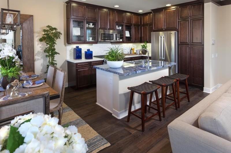Portola Springs Cariz Kitchen